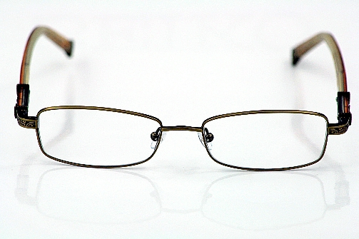 TRUE RELIGION Rusty Eyeglasses Light Bronze Optical Frames