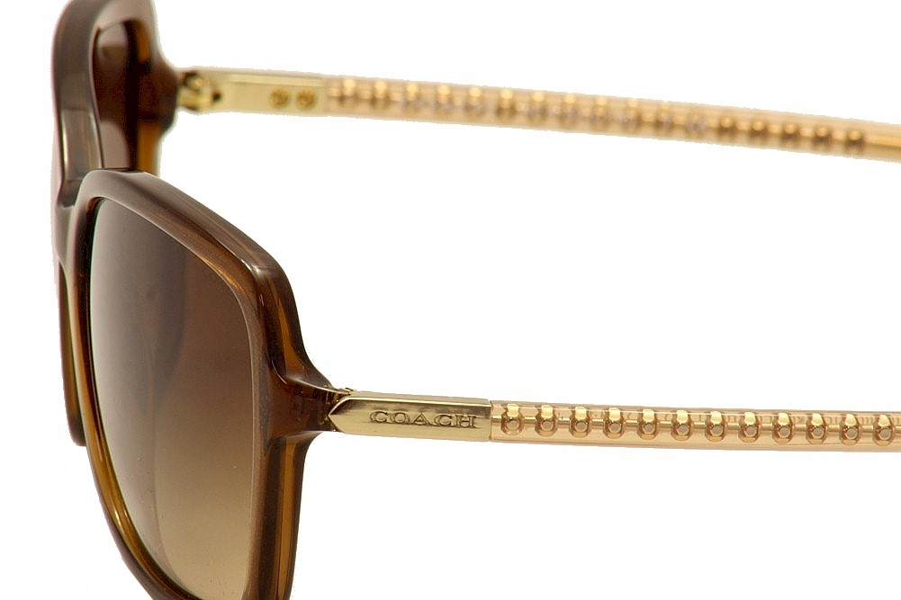 15baac0e92 Coach Women s HC8152 HC 8152 Fashion Sunglasses by Coach