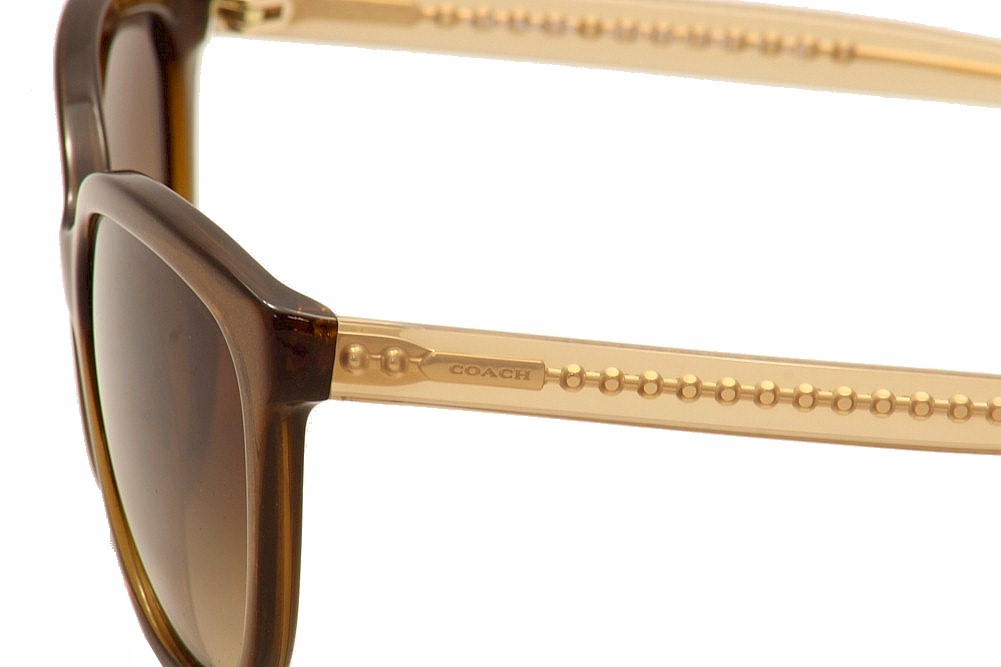 cae787e464 Coach Women s HC8153 HC 8153 Fashion Sunglasses